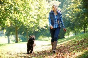 Woman and a dog walking through a park with trees.
