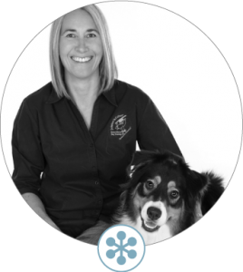 dogbiz DWA Instructor
