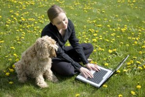 Young woman and dog sitting on the grass looking at a laptop computer