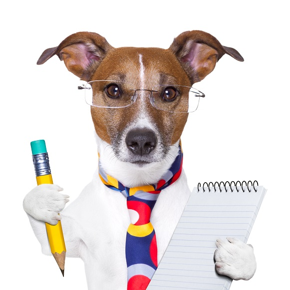 Writing an Effective Dog Professional Bio – dogbiz