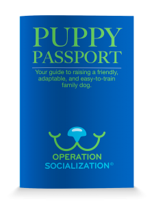 Picture of the Puppy Passport