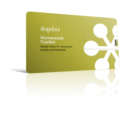 Picture of Homework Toolkit flashdrive