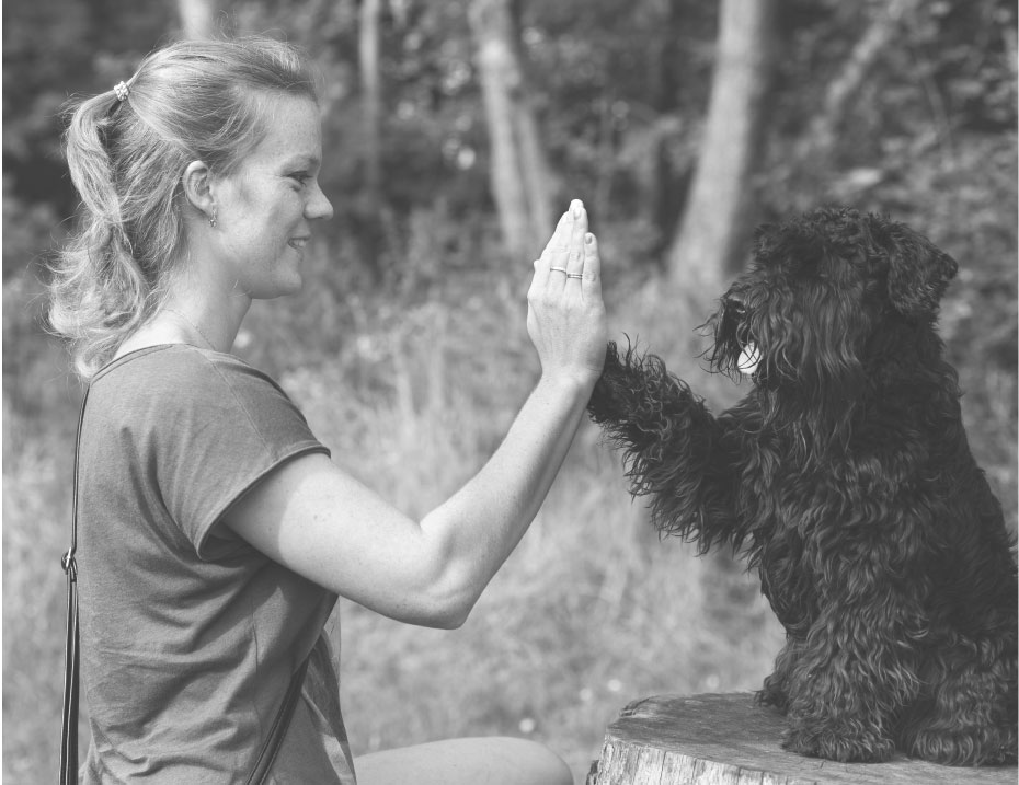 woman with dog high fiving